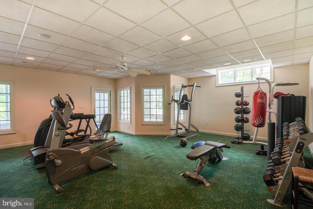 Recreation Room - 10807 GREENSPRING AVE, LUTHERVILLE TIMONIUM