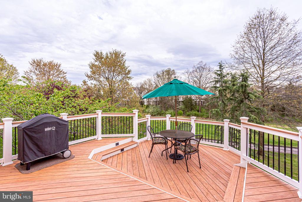 You want to grill out on this deck! - 19862 LA BETE CT, ASHBURN