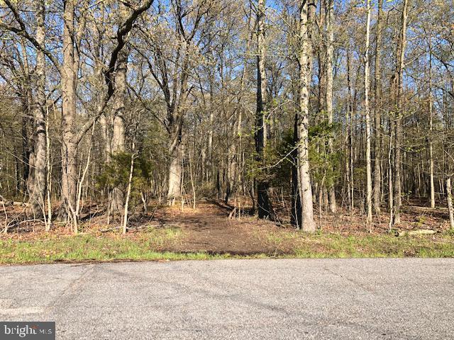 土地 為 出售 在 Churchton, 馬里蘭州 20733 美國