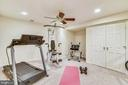 Exercise room ~ lower level. - 20756 LAPLUME PL, ASHBURN