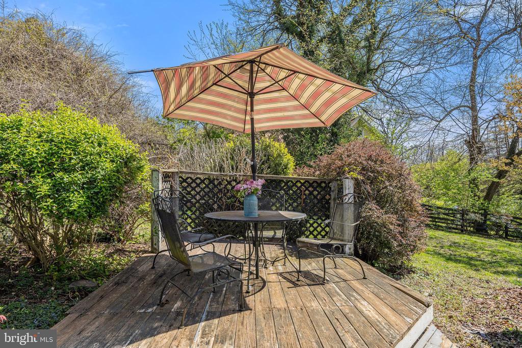 Perennials & flowering trees galore! - 17350 DRY MILL RD, LEESBURG