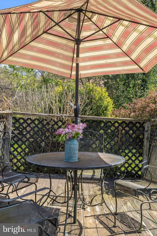 Raised deck for outdoor enjoyment. - 17350 DRY MILL RD, LEESBURG