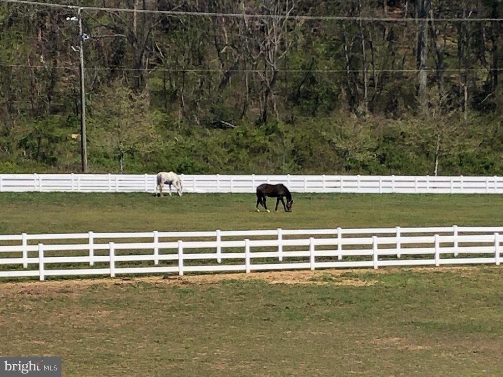 Horse Ring - Community - 11504 PEGASUS CT, UPPER MARLBORO