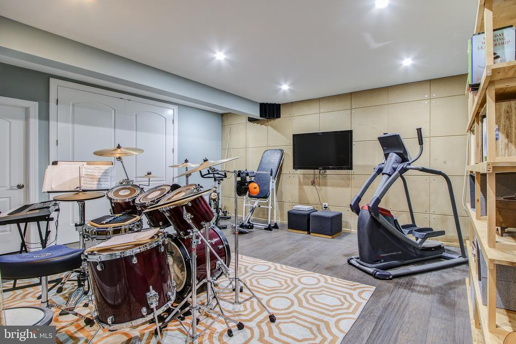 Sound-proof music room. - 47652 PAULSEN SQ, POTOMAC FALLS