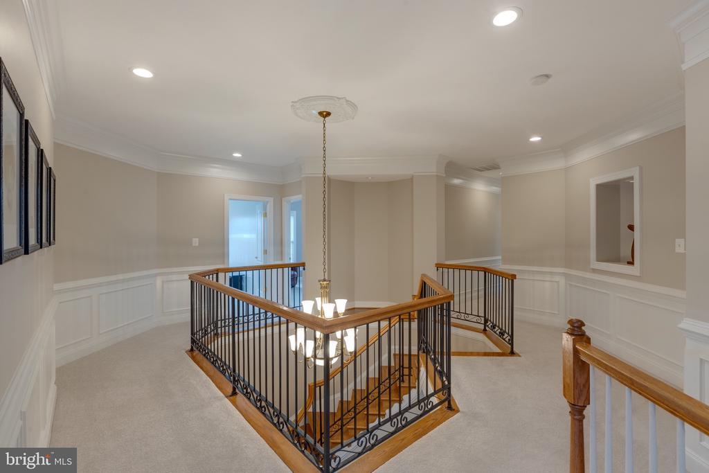 Iron Railings, Extensive Crown Molding - 16329 LIMESTONE CT, LEESBURG