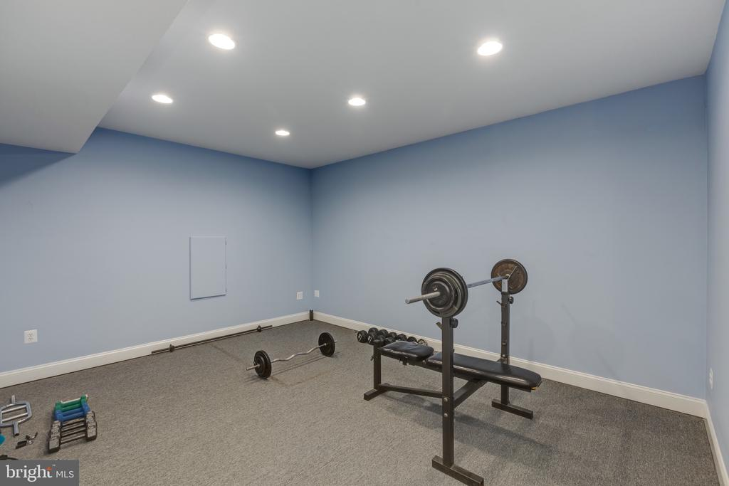 Lower Level Exercise Room - 16329 LIMESTONE CT, LEESBURG