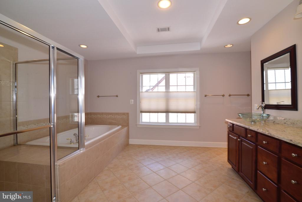 Master Bath with Tray Ceiling. - 18229 CYPRESS POINT TER, LEESBURG