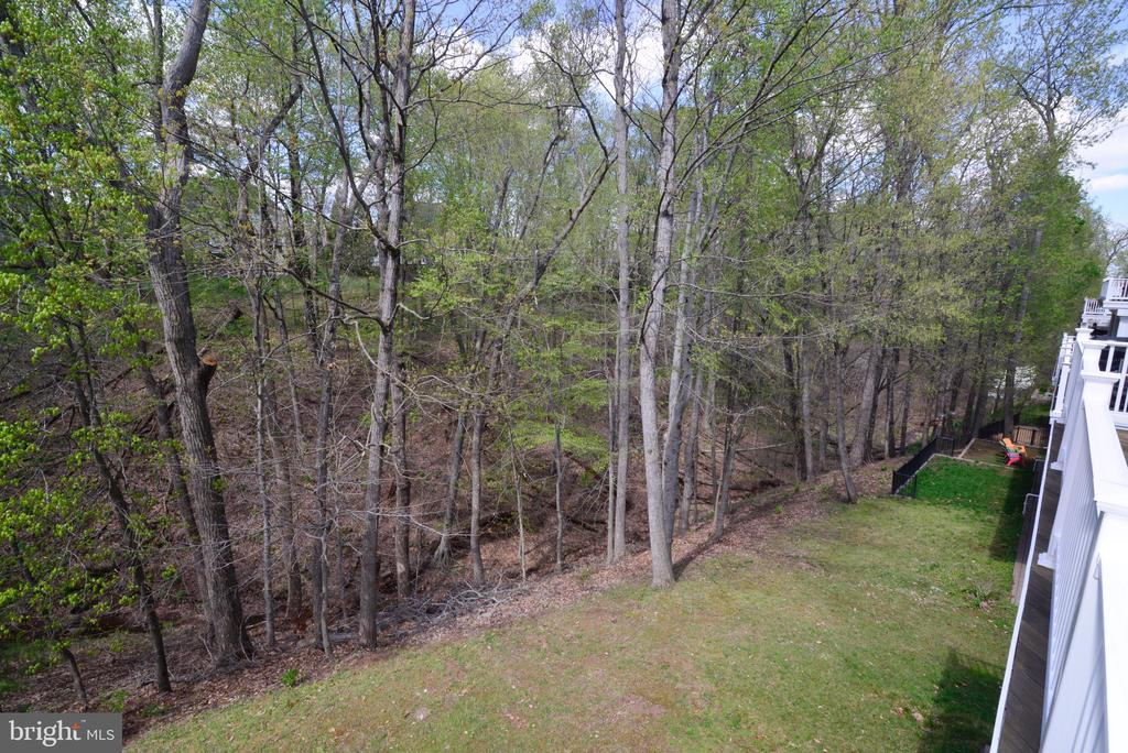 View From Deck Overlooking Yard, Trees and Creek. - 18229 CYPRESS POINT TER, LEESBURG