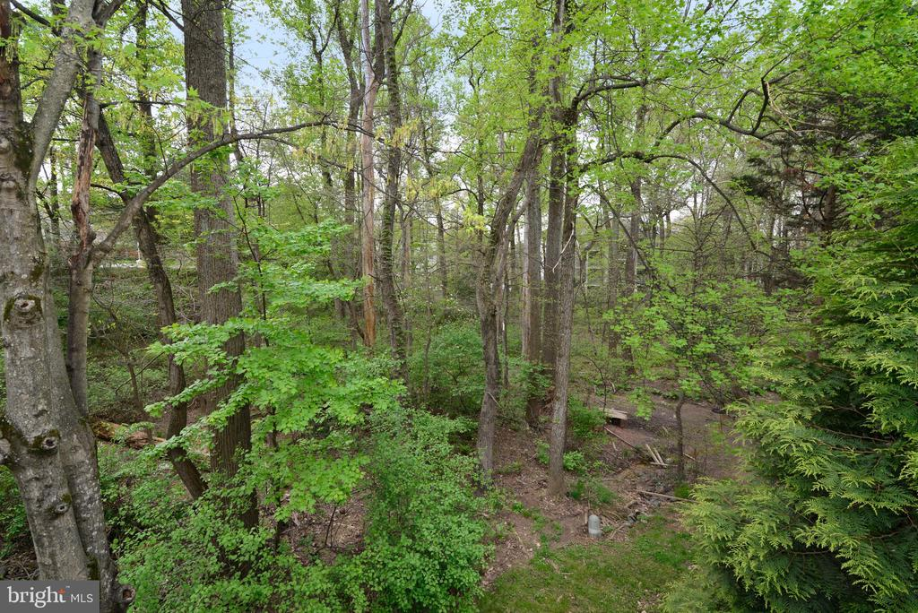 Backyard Views - 11612 OLD BROOKVILLE CT, RESTON