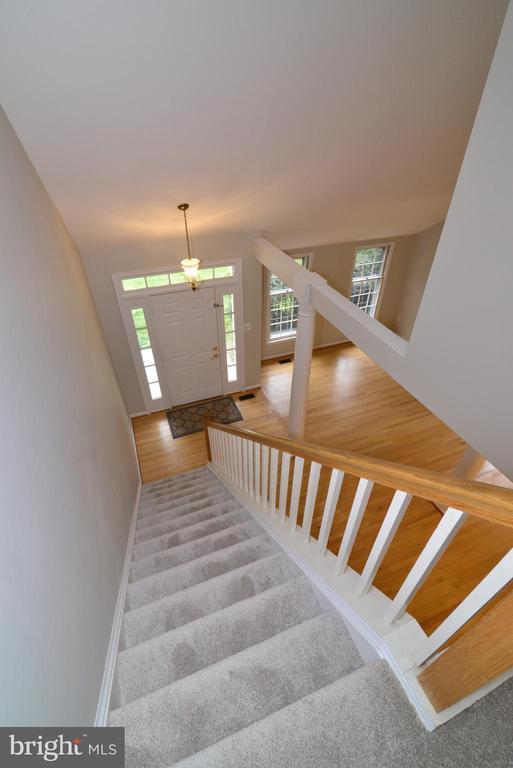 View from Upper Landing - 11612 OLD BROOKVILLE CT, RESTON