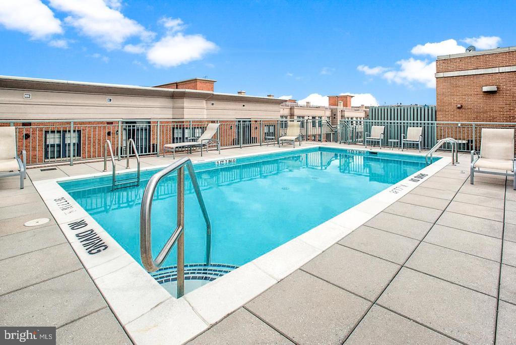 Rooftop Pool - 2425 L ST NW #240, WASHINGTON