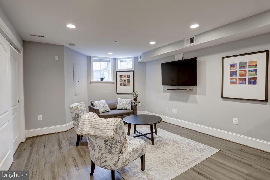 Basement Living room - 229 E ST NE, WASHINGTON