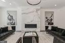 Modern Design w/ Fireplace - 17 FREDERICK DOUGLASS CT NE, WASHINGTON