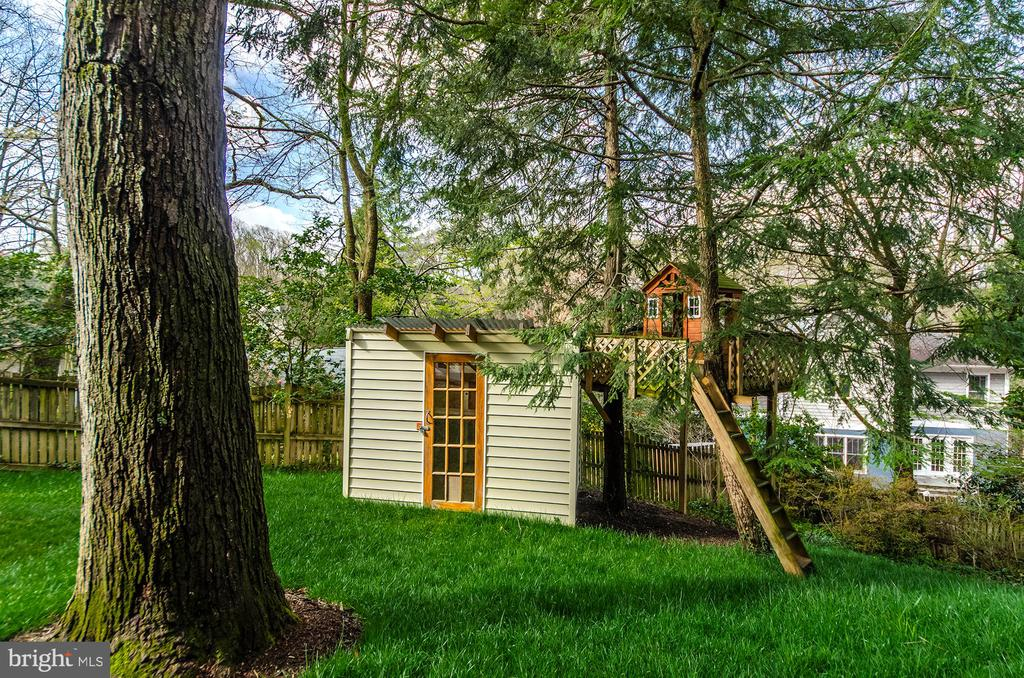 Potting shed or play house and tree house - 2700 BEECHWOOD PL, ARLINGTON