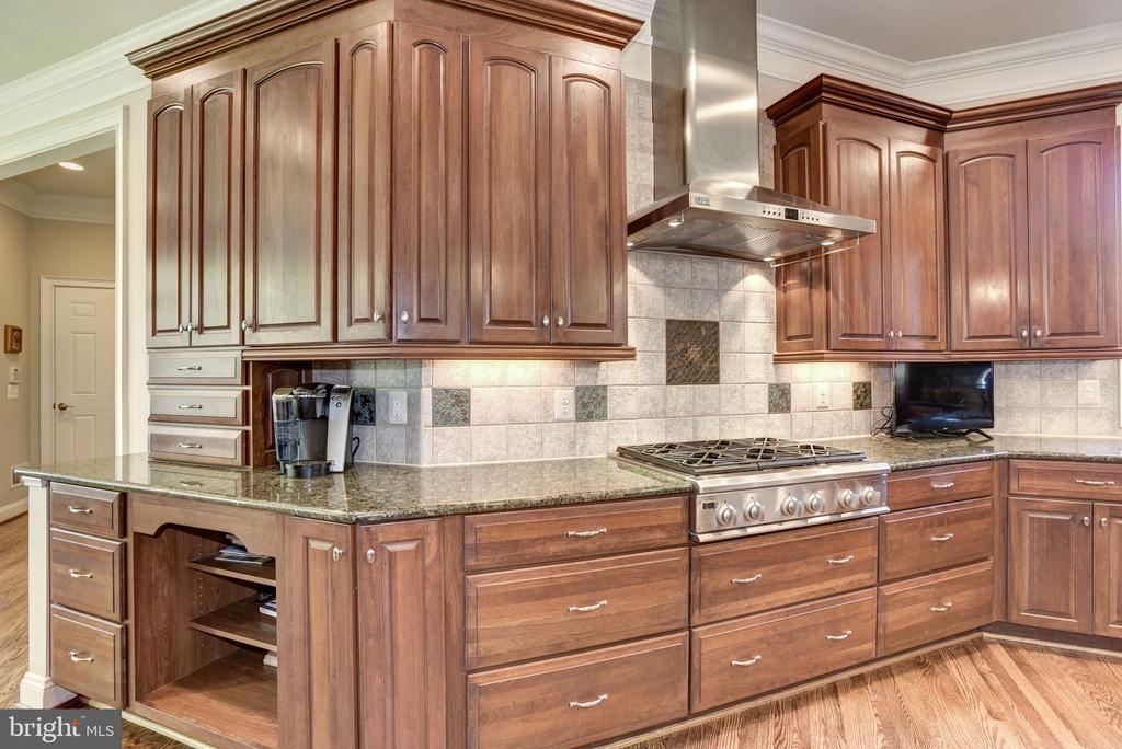 Kitchen with cooktop and professional hood - 40989 GRENATA PRESERVE PL, LEESBURG