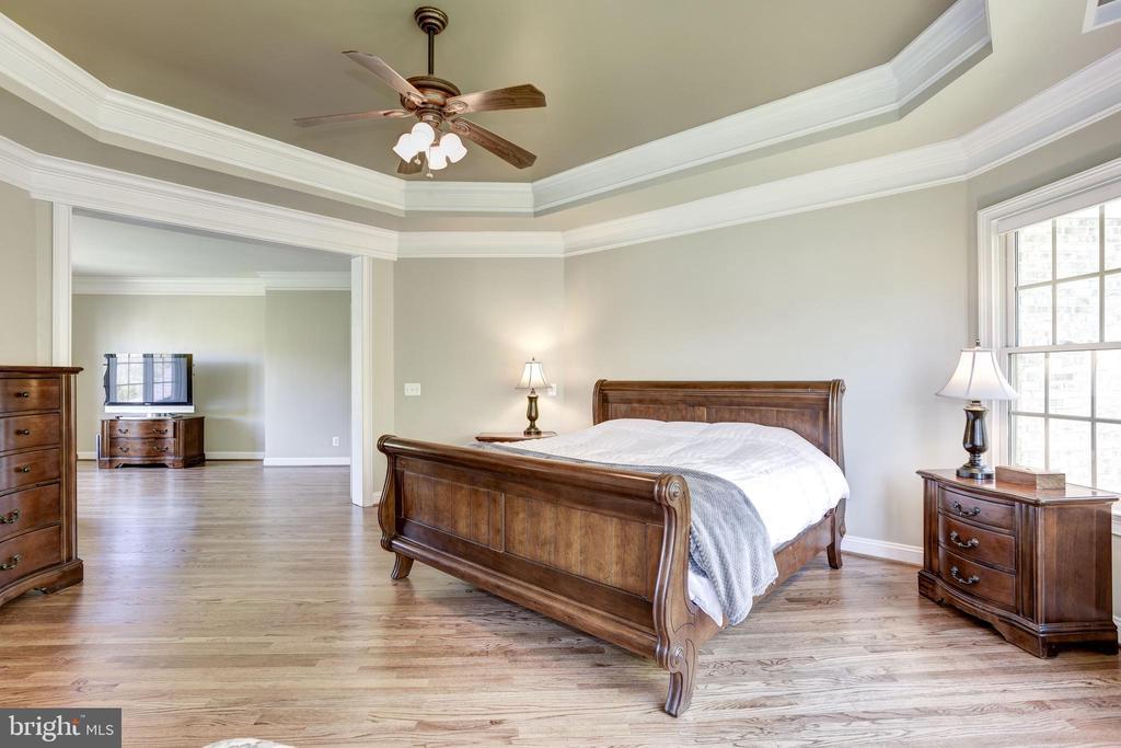 Master Bedroom - 40989 GRENATA PRESERVE PL, LEESBURG