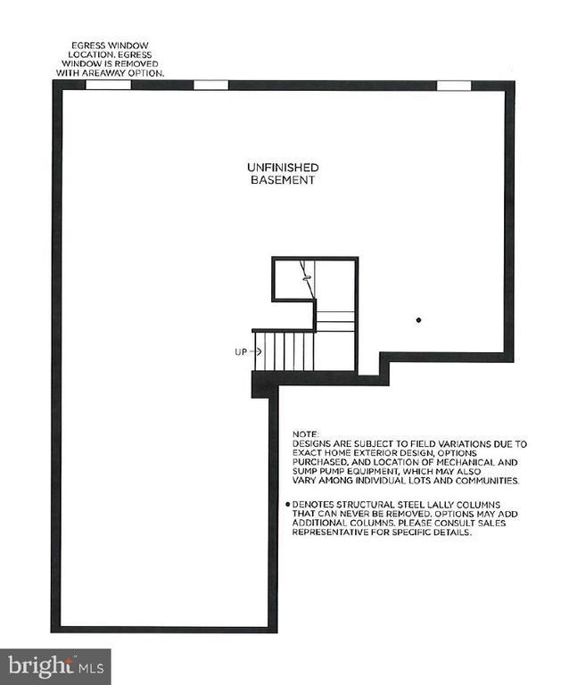 Basement Level - 25034 WOODLAND IRIS DR, ALDIE
