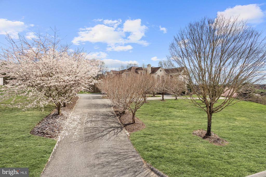 Tree Lined Driveway Entry - 24 BRETT MANOR CT, COCKEYSVILLE