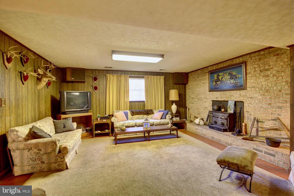Wood Stove in Family Room - 14460 MILLTOWN RD, LOVETTSVILLE