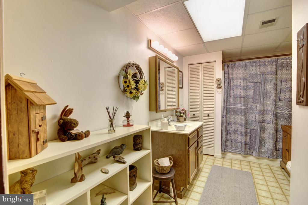 Basement Hall Bath - 14460 MILLTOWN RD, LOVETTSVILLE