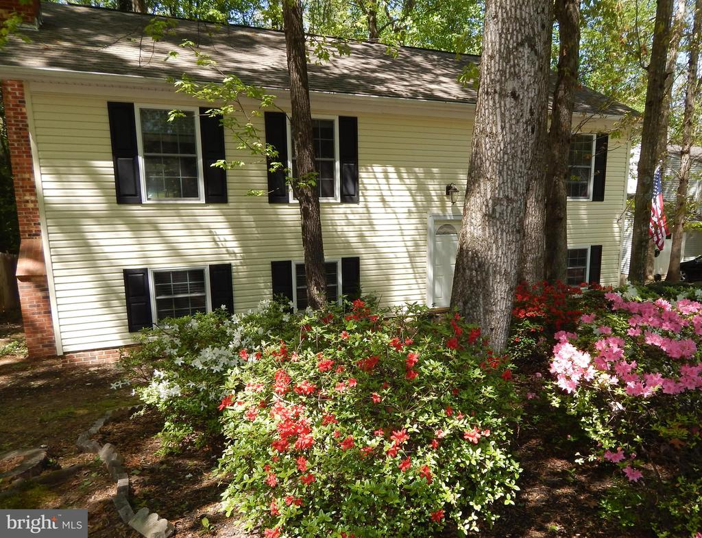 Beautiful blooms for great curb appeal - 4 NORMAN CT, FREDERICKSBURG