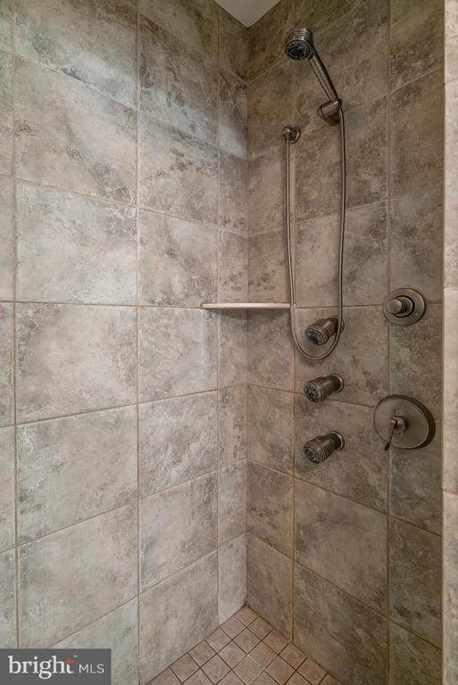 Master Bath Shower - 24020 LACEYS TAVERN CT, ALDIE