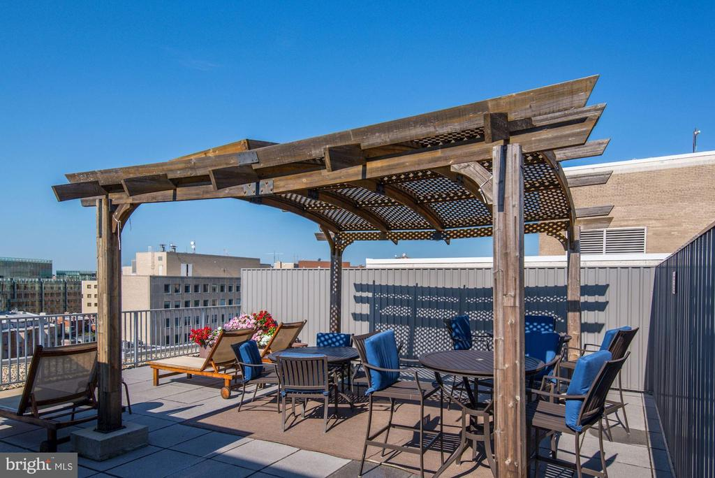 Shared Rooftop Deck w/ City Views! - 1711 MASSACHUSETTS AVE NW #214, WASHINGTON
