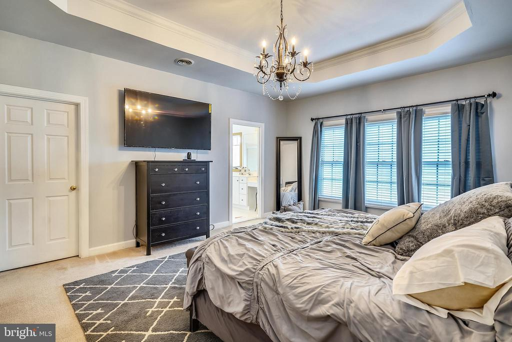 MBR with trey ceiling and walk in closet. - 17720 CRICKET HILL DR, GERMANTOWN