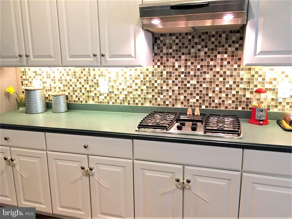 Gas cooking and gas heat! - 17720 CRICKET HILL DR, GERMANTOWN