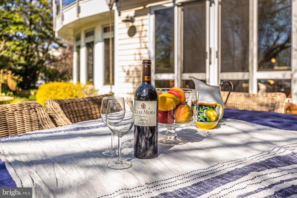 Wining and dining on back patio - 610 BURNSIDE ST, ANNAPOLIS