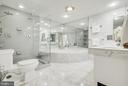 Marble Bathroom - New Dual Head Shower - 1300 CRYSTAL DR #PH14S, ARLINGTON
