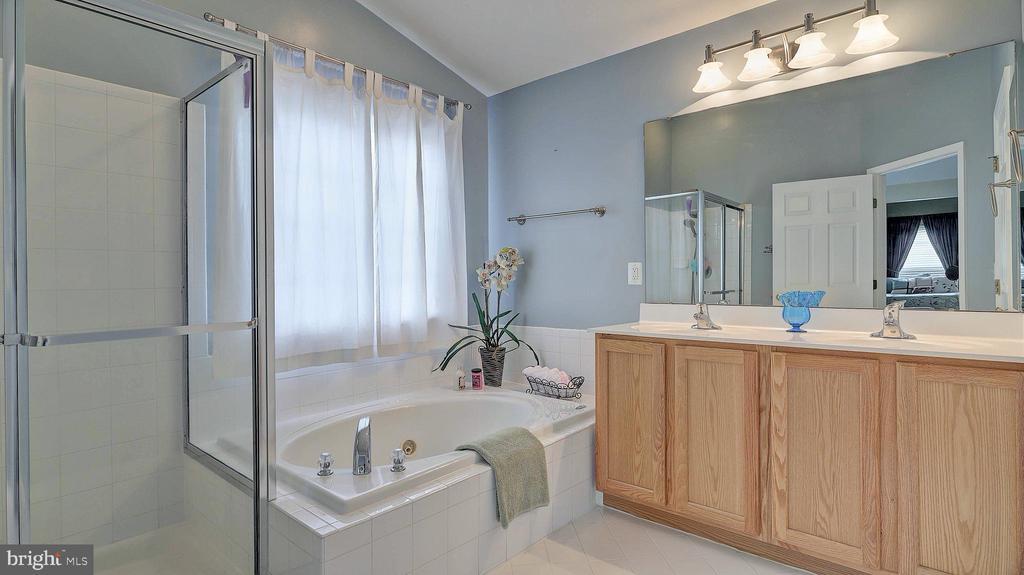 Master Bedroom Bath, soaking tub - 43262 LECROY CIR, LEESBURG