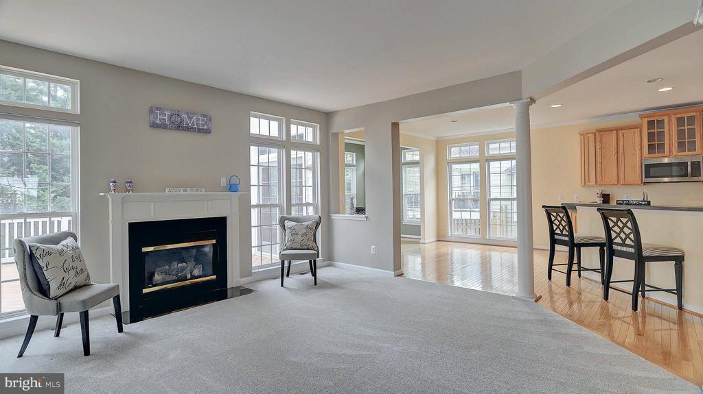 Family Room, new carpet - 43262 LECROY CIR, LEESBURG