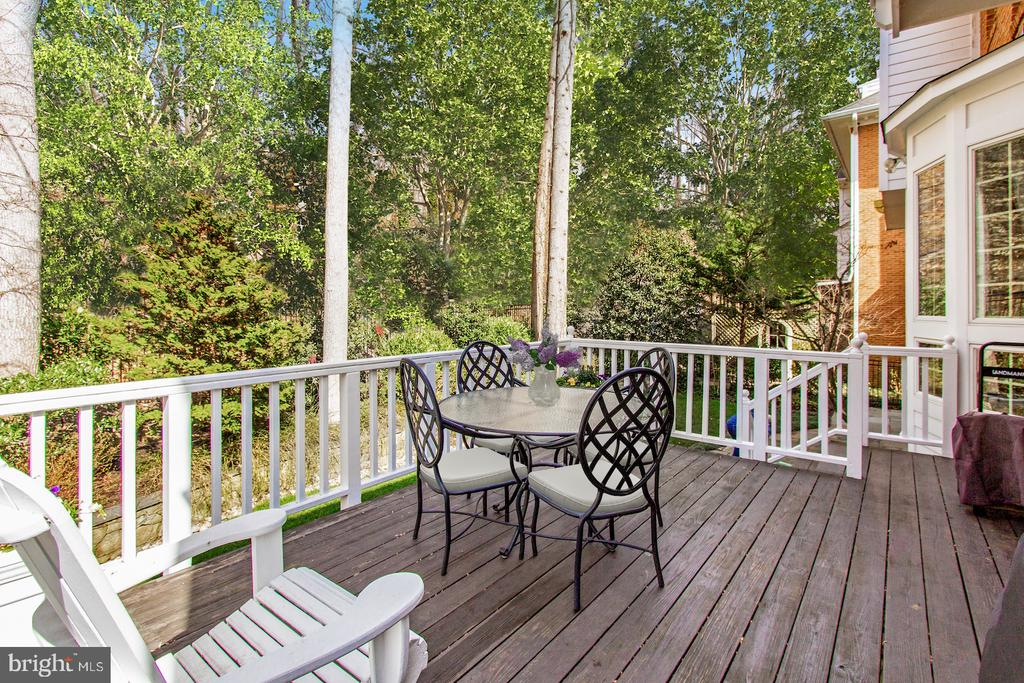 Rear Terrace with Woodland Views - 4125 PARKGLEN CT NW, WASHINGTON