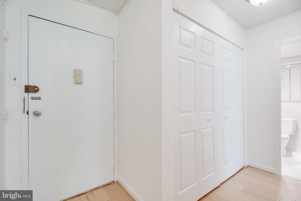 Door to your unit, and the large hall closet - 2030 N ADAMS ST #208, ARLINGTON