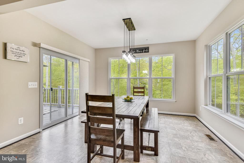 Eat breakfast in your sunroom, builder option! - 17966 WOODS VIEW DR, DUMFRIES