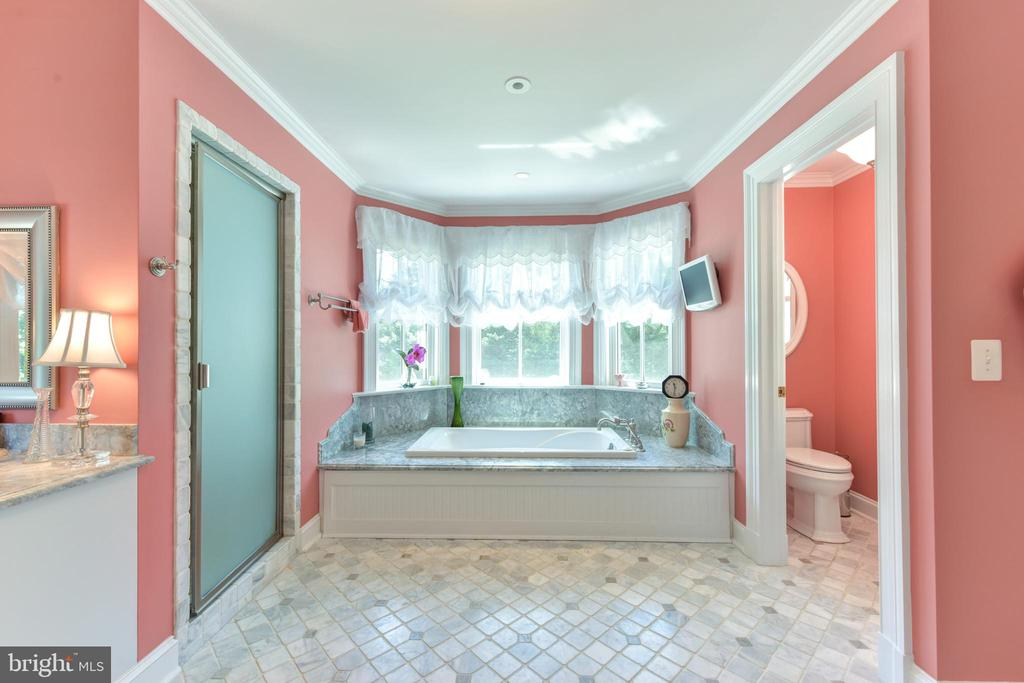 Master bathroom, separate tub and shower - 5937 TELEGRAPH RD, ALEXANDRIA