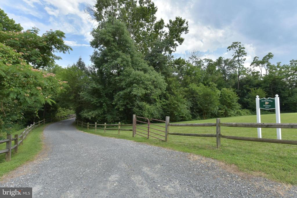 Private tree-lined driveway - 5937 TELEGRAPH RD, ALEXANDRIA