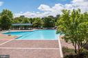 Swimming pool - 5501 SEMINARY RD #611S, FALLS CHURCH