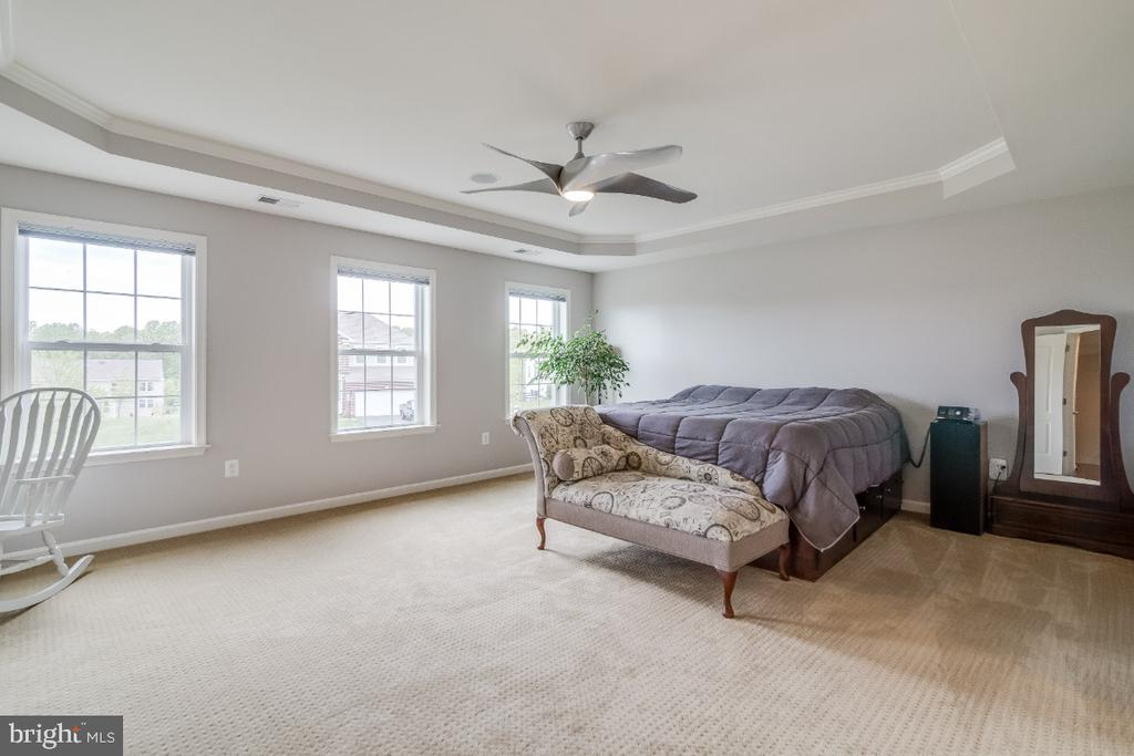 Master Bedroom with Trey Ceiling - 6008 FOX HAVEN CT, WOODBRIDGE