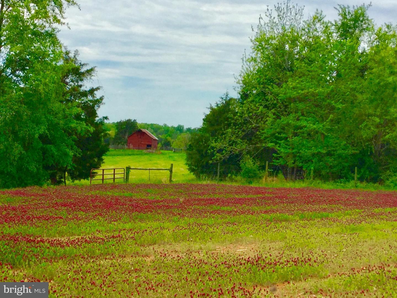 土地 為 出售 在 Dillwyn, 弗吉尼亞州 23936 美國