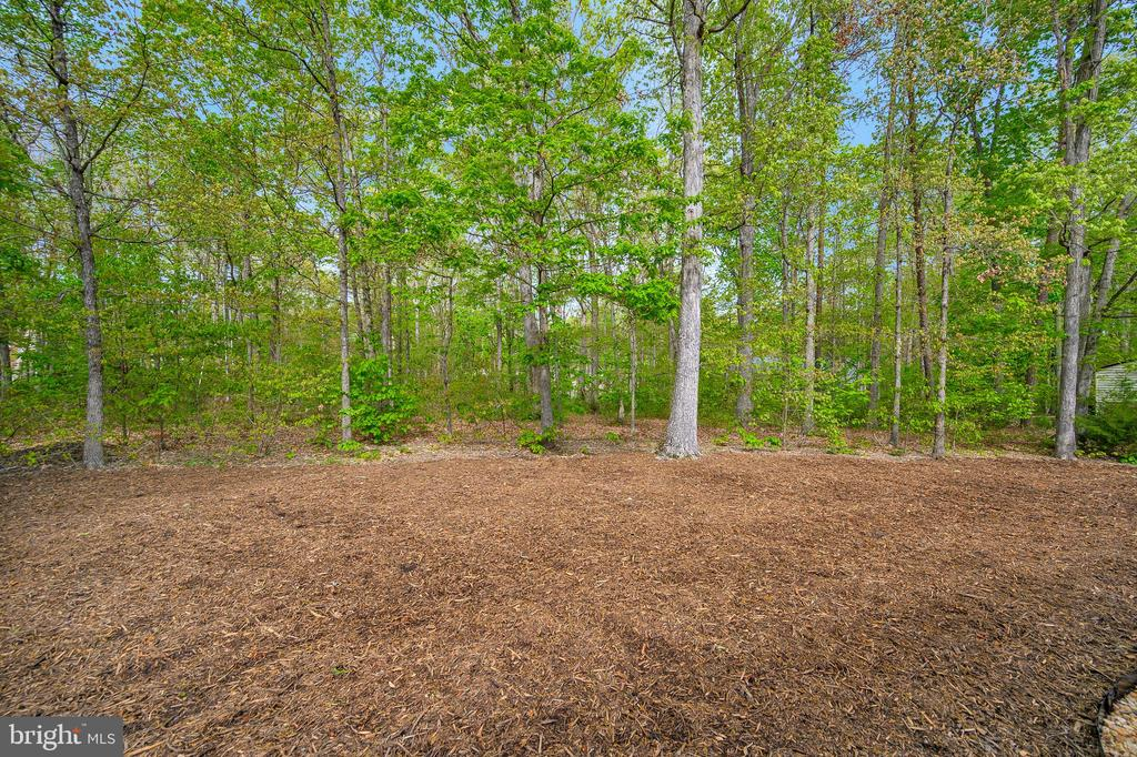 Open Area of mix wooded private backyard - 228 YORKTOWN BLVD, LOCUST GROVE