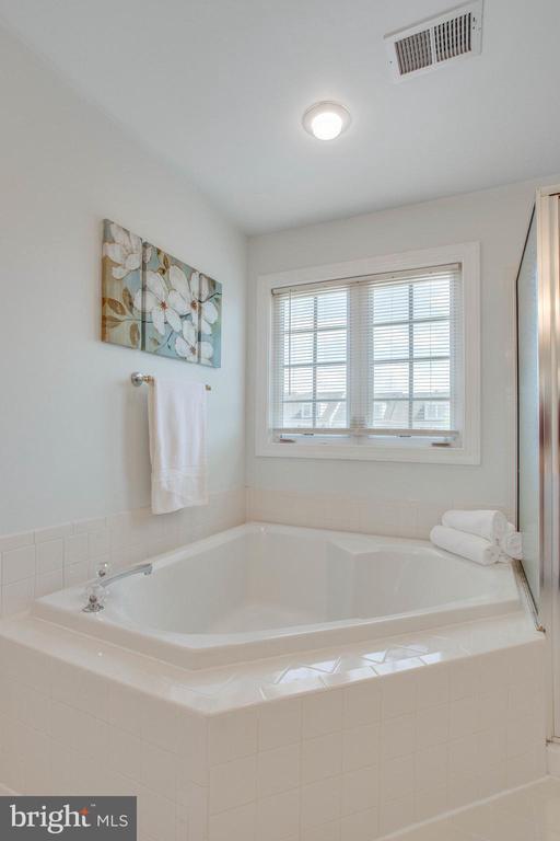Separate soaking tub in Master Bath - 43771 APACHE WELLS TER, LEESBURG