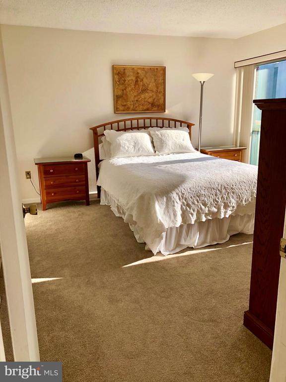 Master Bedroom Suite #1 - 1300 ARMY NAVY DR #1012, ARLINGTON