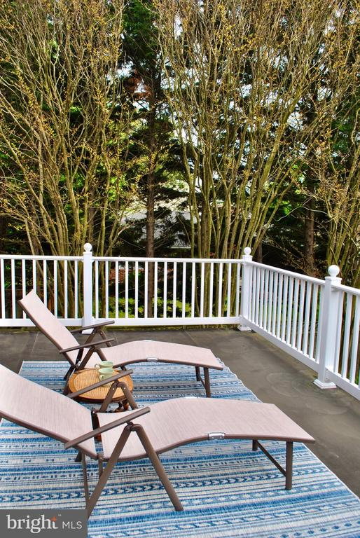 and overlooks very private, beautiful backyard. - 434 STATE ST, ANNAPOLIS