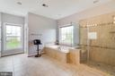 Master Bath with soaking tub & walk in shower - 16144 WOODLEY HILLS RD, HAYMARKET