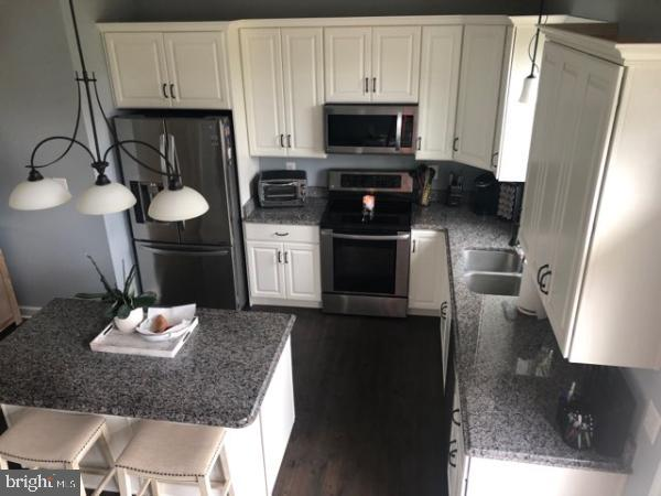 Open Kitchen / White Cabinets - 10220 DUBLIN RD, WALKERSVILLE