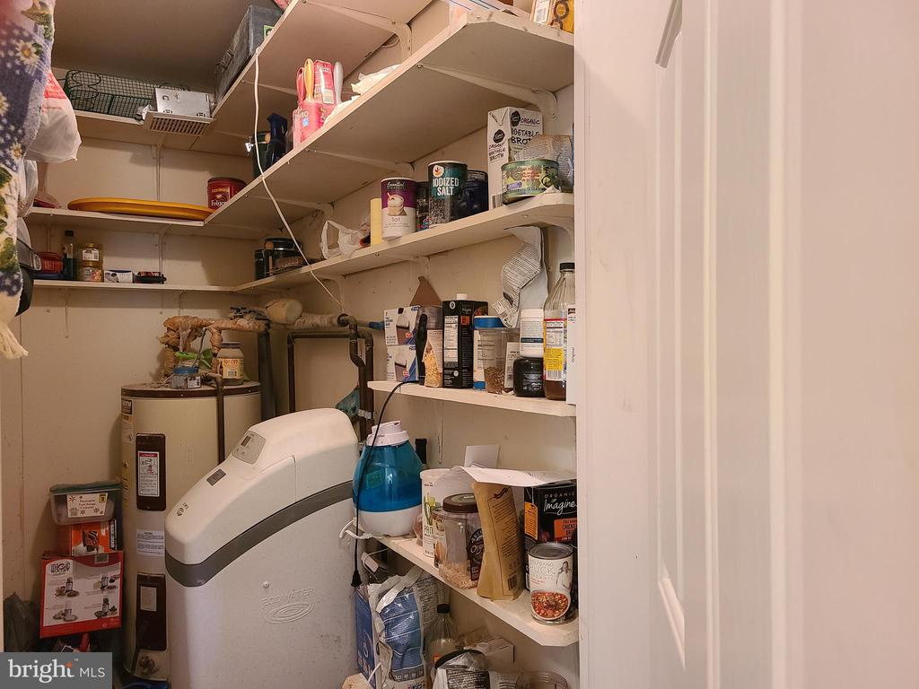 Nice size pantry with water softener - 544 PYLETOWN RD, BOYCE