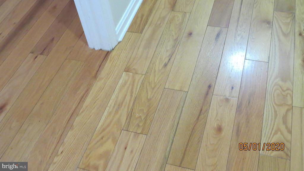 Hardwood floors - 22191 BERRY RUN RD, ORANGE