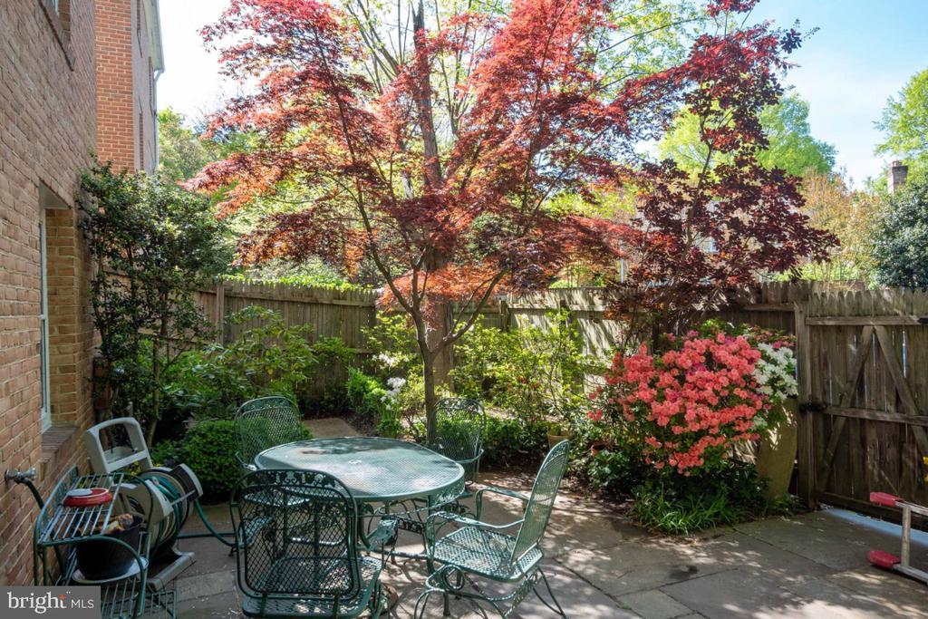 Colorfully landscaped back patio - 4732 MASSACHUSETTS AVE NW, WASHINGTON